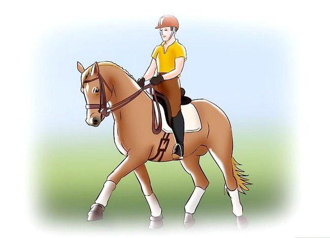 Billede med titlen Post mens du trøjer på en hest Trin 1